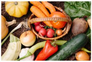 麻布アドバンスドボディ-野菜